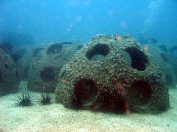 7389-reef_balls
