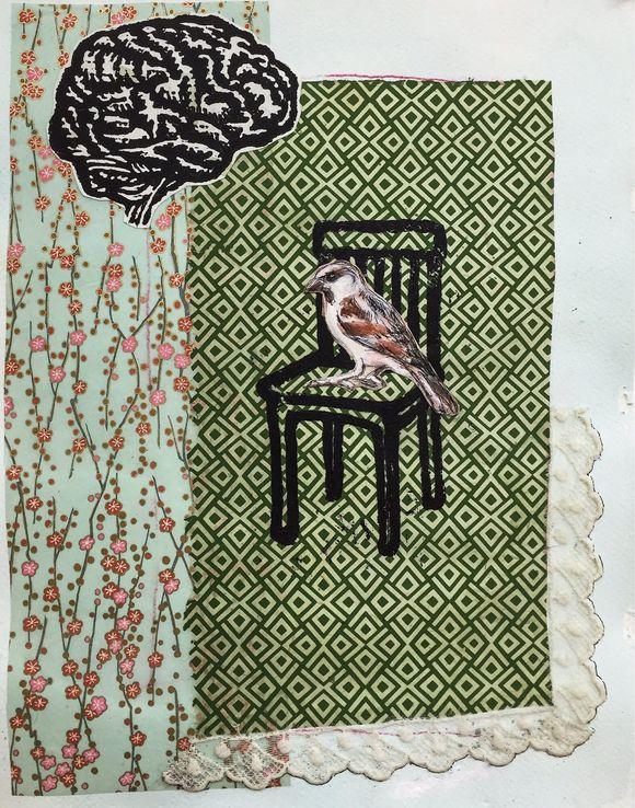 Bird, brain