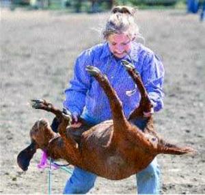 Goatflipping